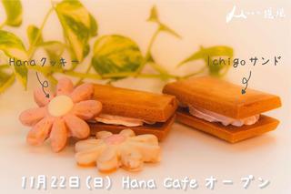 Hanacafeメイン画像_アートボード 1.jpg